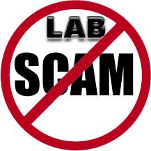 lab-scam